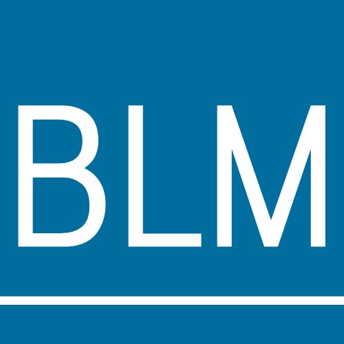 BLM Rechtsanwälte